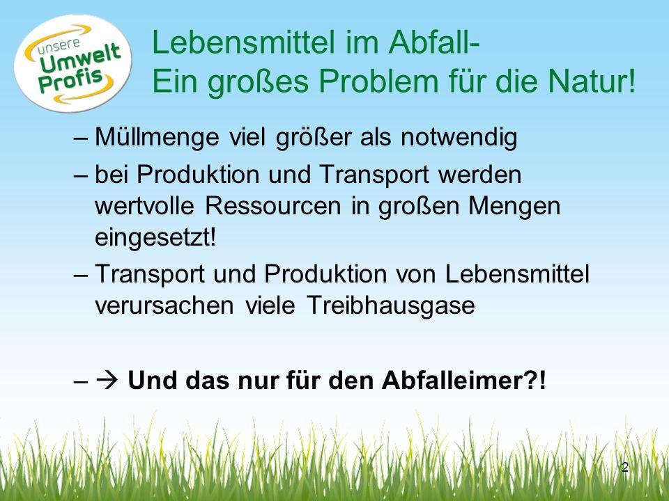Lebensmittel im Abfall- Ein großes Problem für die Natur!