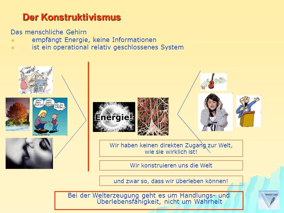 Der Konstruktivismus Das menschliche Gehirn