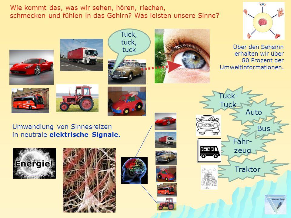 Tuck-Tuck Auto Bus Fahr-zeug Traktor