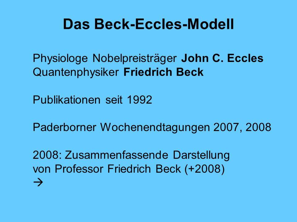 Das Beck-Eccles-Modell