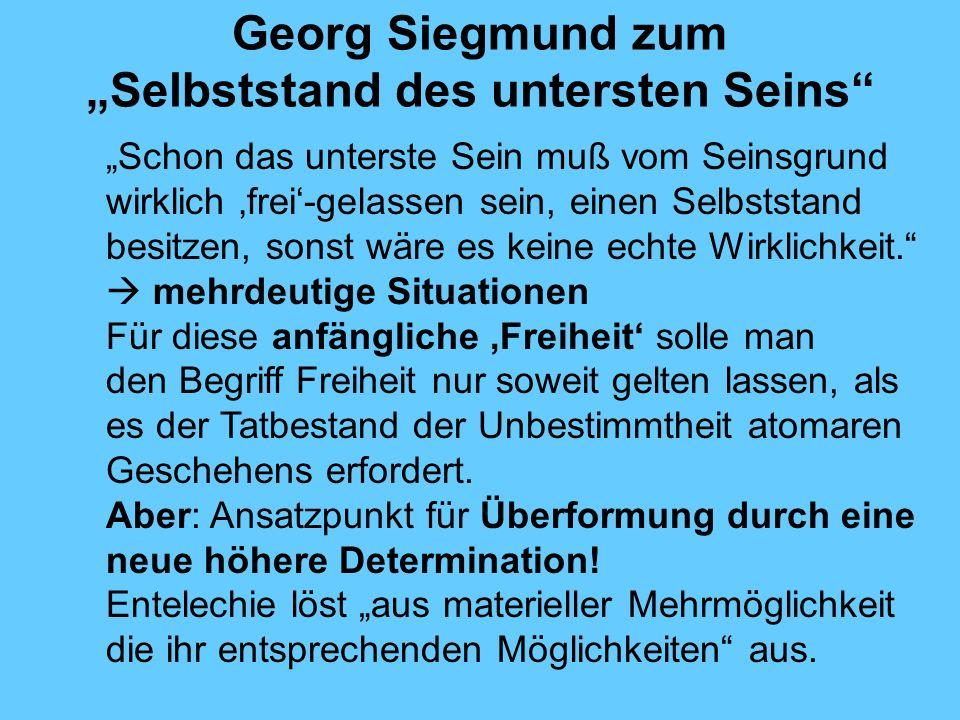 """Georg Siegmund zum """"Selbststand des untersten Seins"""
