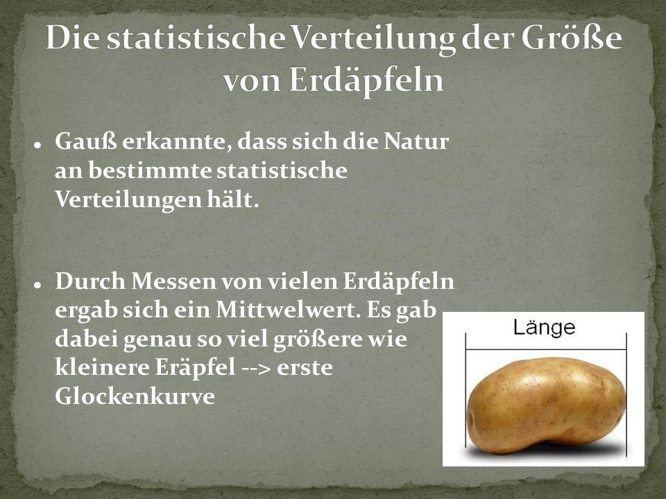 Die statistische Verteilung der Größe von Erdäpfeln