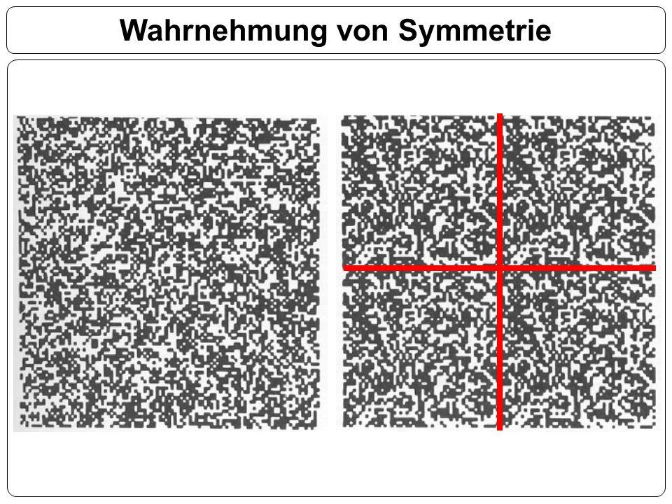 Wahrnehmung von Symmetrie
