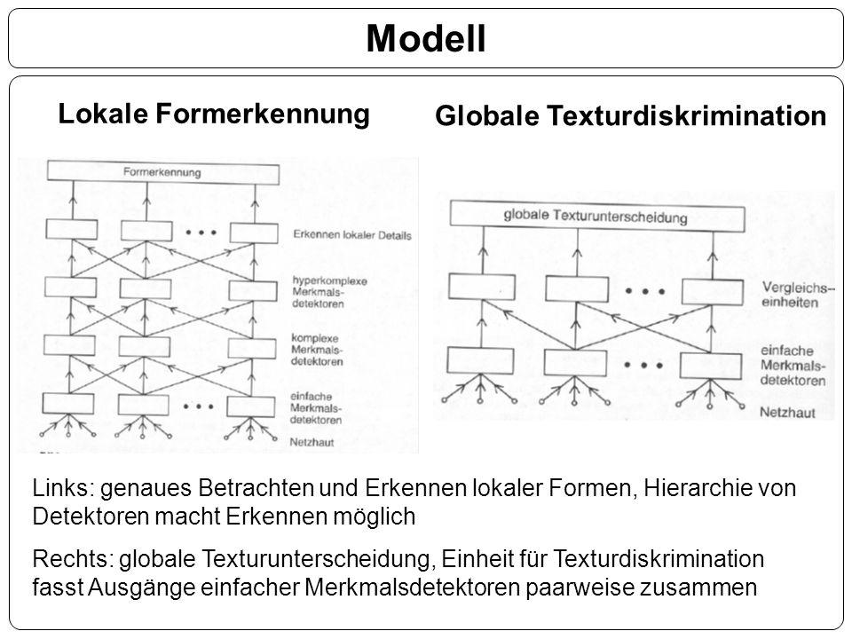 Modell Lokale Formerkennung Globale Texturdiskrimination