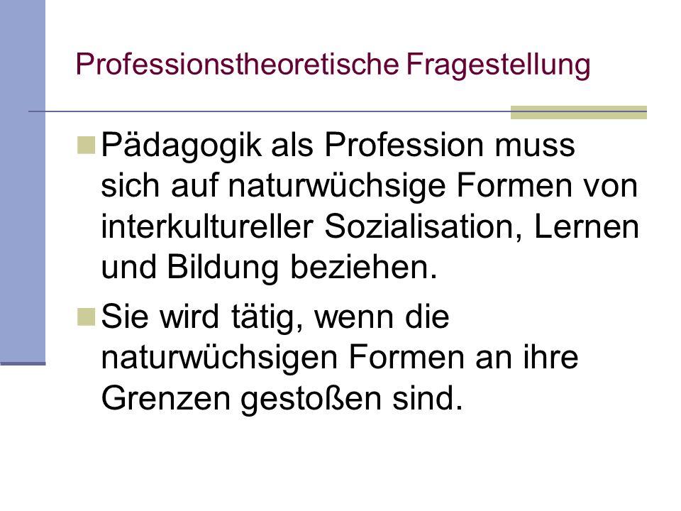 Professionstheoretische Fragestellung