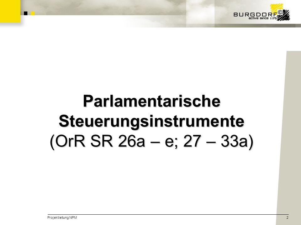 Parlamentarische Steuerungsinstrumente