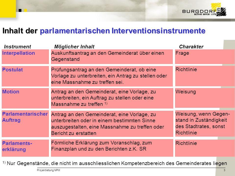 Inhalt der parlamentarischen Interventionsinstrumente