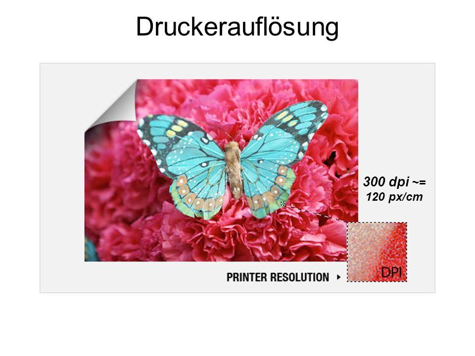 Druckerauflösung 300 dpi ~= 120 px/cm