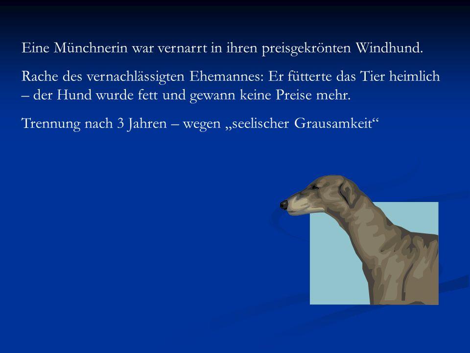 Eine Münchnerin war vernarrt in ihren preisgekrönten Windhund.