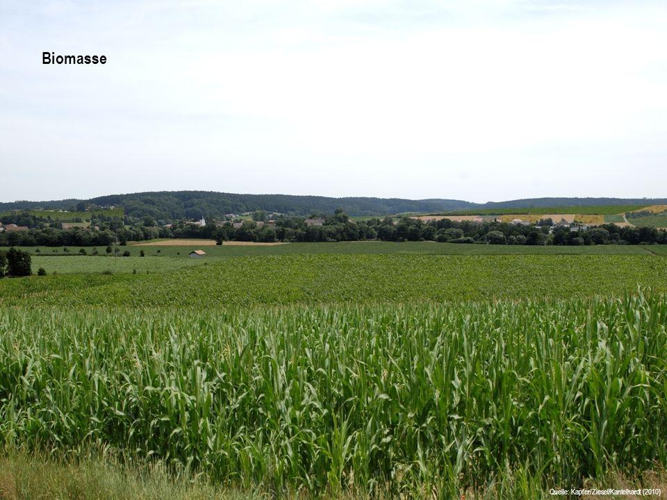 Ausgangssituation Biomasse Quelle: Kapfer/Ziesel/Kantelhardt (2010)