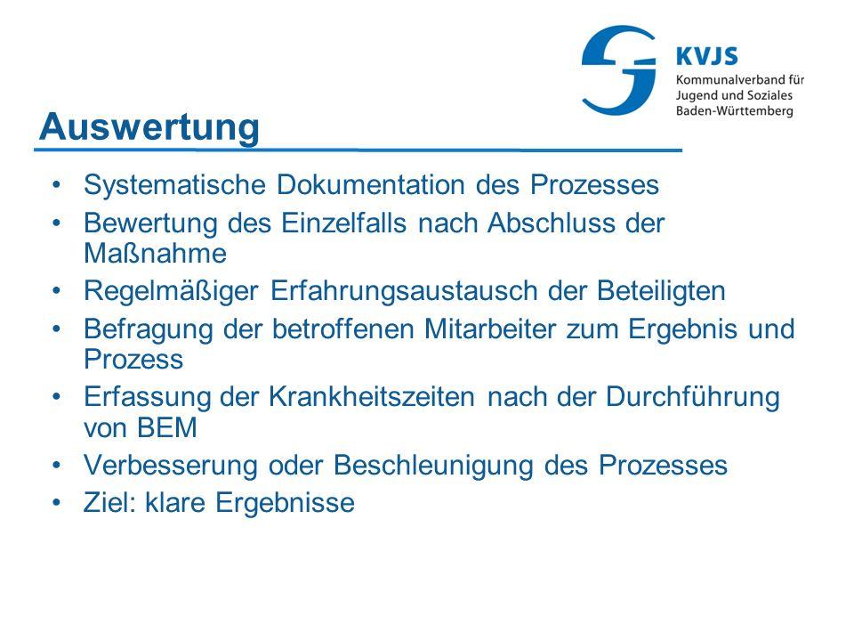 Auswertung Systematische Dokumentation des Prozesses