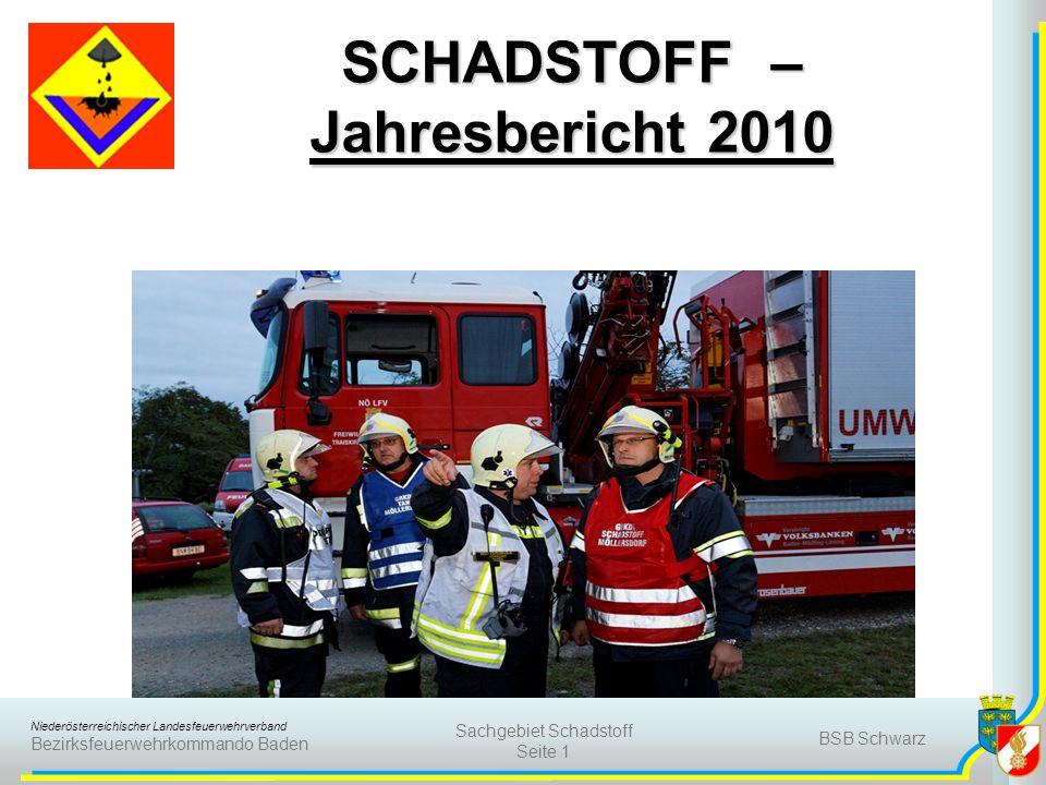 SCHADSTOFF – Jahresbericht 2010