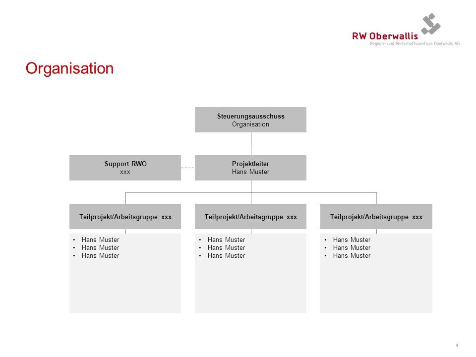 Organisation Steuerungsausschuss Organisation Support RWO xxx