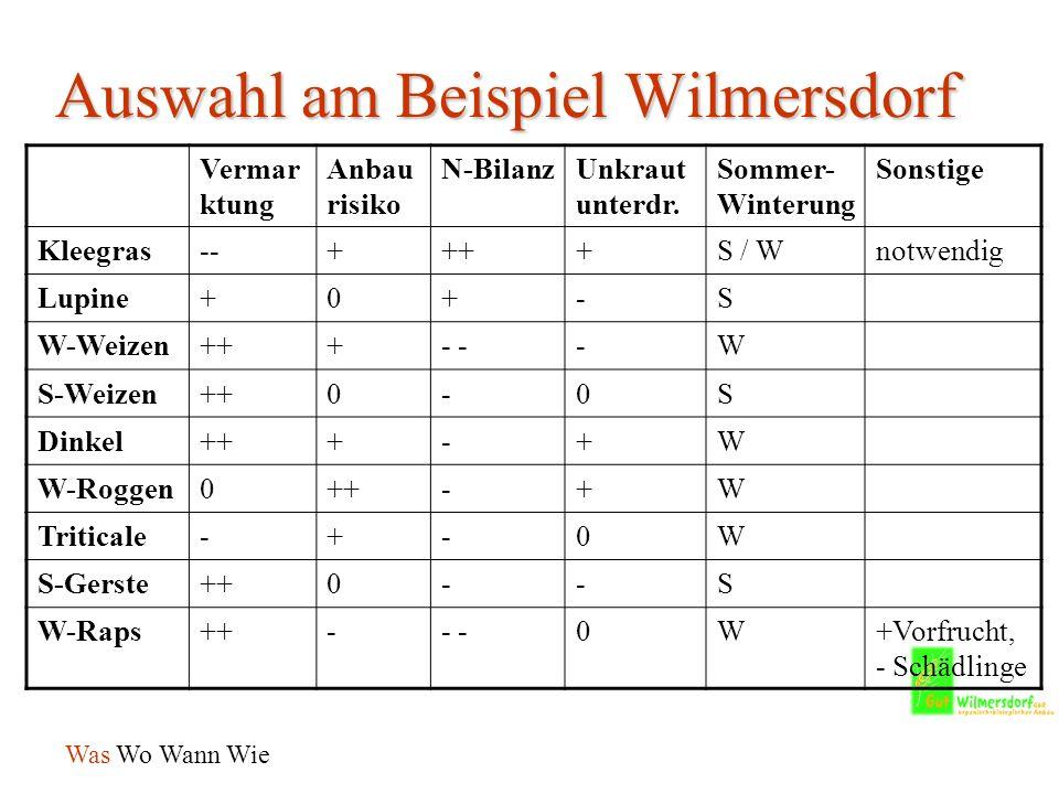 Auswahl am Beispiel Wilmersdorf