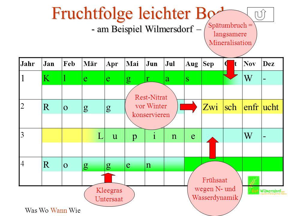 Fruchtfolge leichter Boden - am Beispiel Wilmersdorf –
