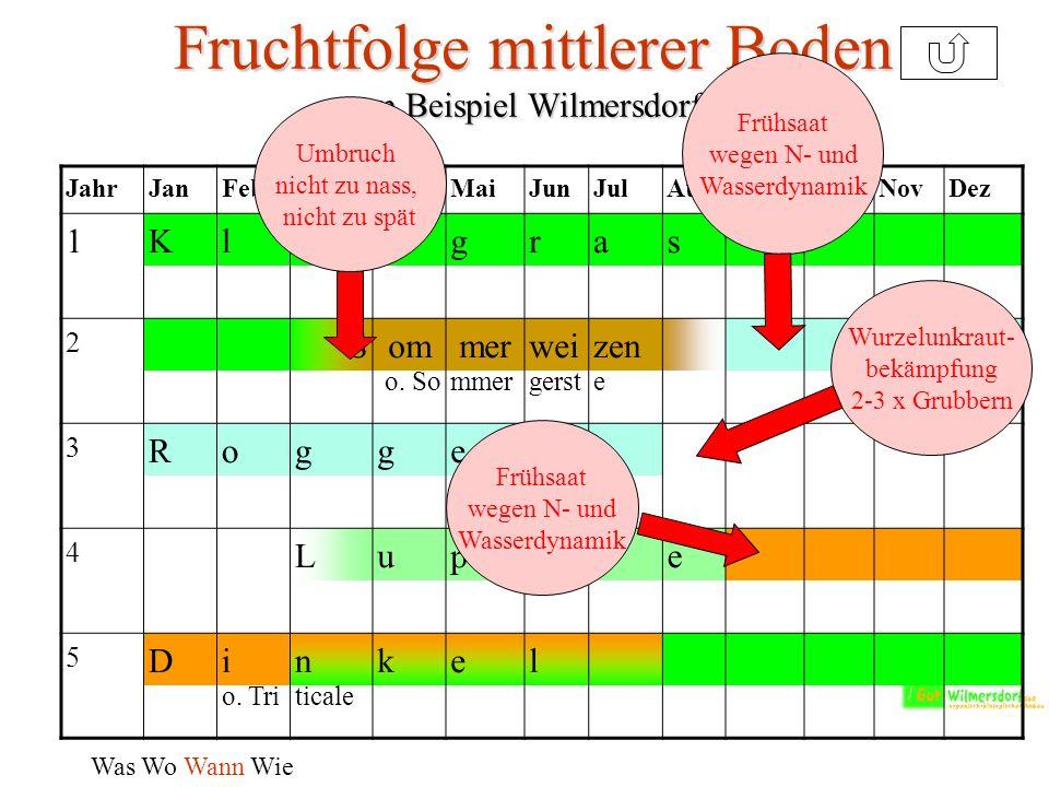 Fruchtfolge mittlerer Boden - am Beispiel Wilmersdorf –