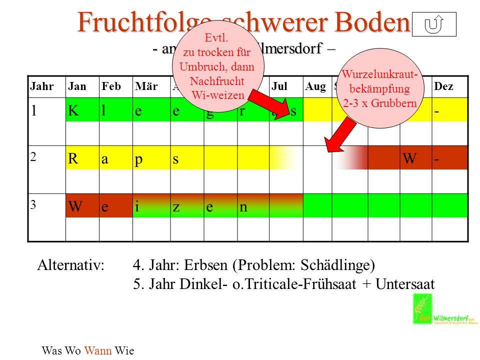 Fruchtfolge schwerer Boden - am Beispiel Wilmersdorf –