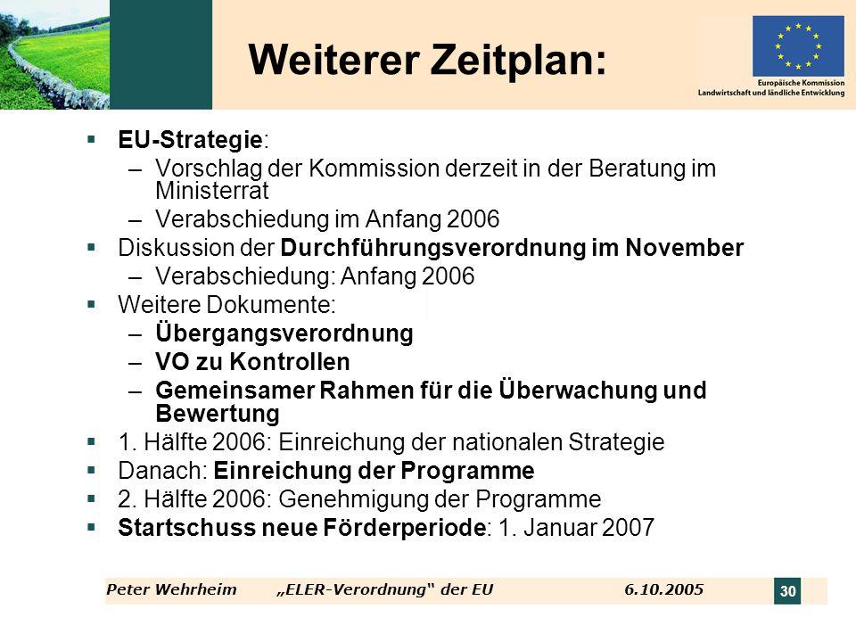 Weiterer Zeitplan: EU-Strategie: