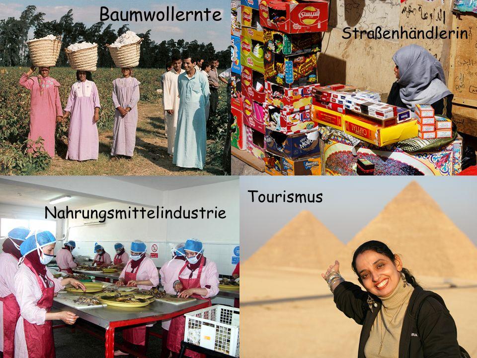 Baumwollernte Straßenhändlerin Tourismus Nahrungsmittelindustrie