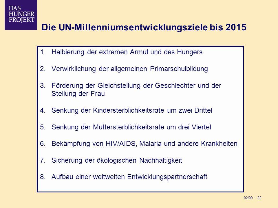 Die UN-Millenniumsentwicklungsziele bis 2015