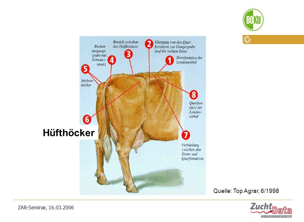 Hüfthöcker Quelle: Top Agrar, 6/1998 ZAR-Seminar, 16.03.2006