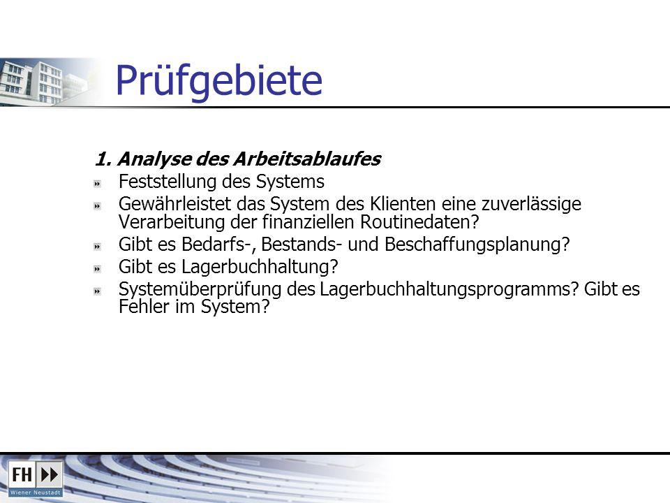 Prüfgebiete 1. Analyse des Arbeitsablaufes Feststellung des Systems
