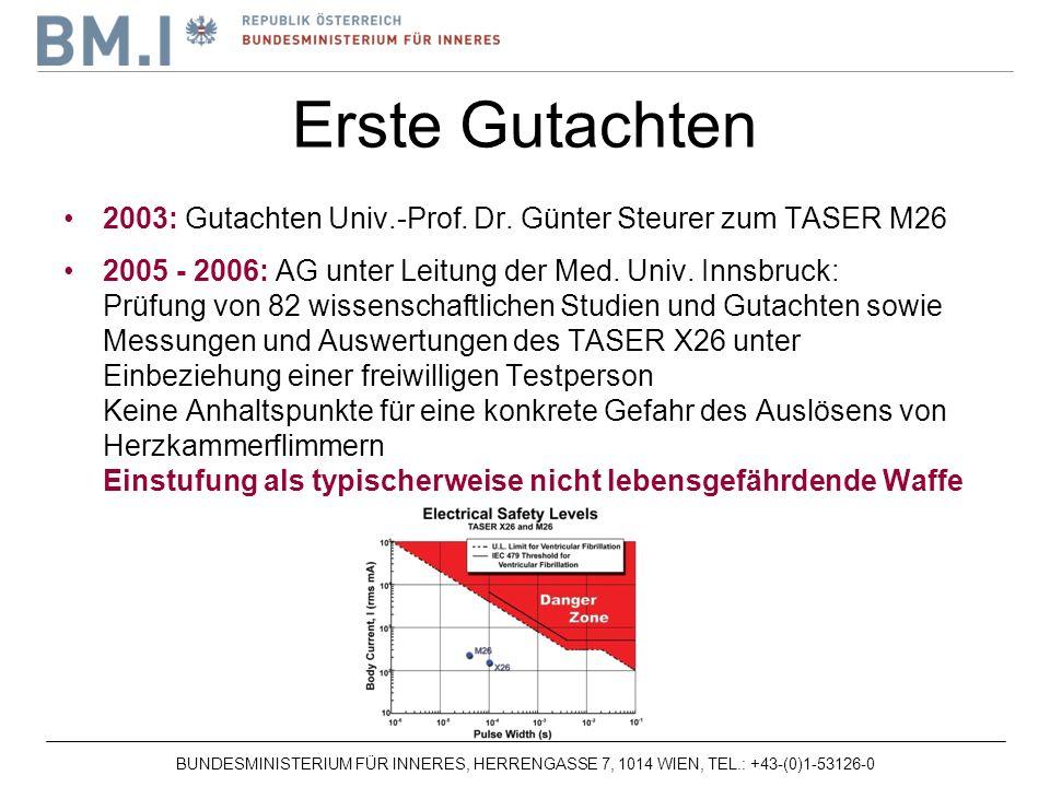 Erste Gutachten 2003: Gutachten Univ.-Prof. Dr. Günter Steurer zum TASER M26.