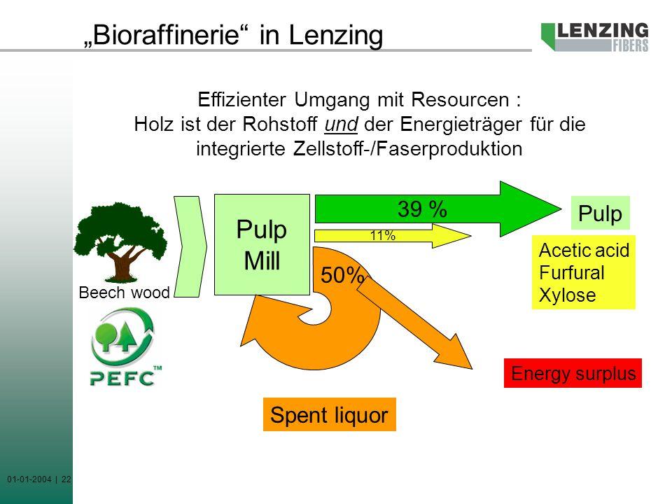 """Bioraffinerie in Lenzing"
