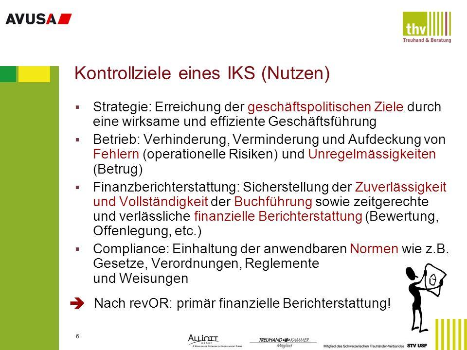 Kontrollziele eines IKS (Nutzen)