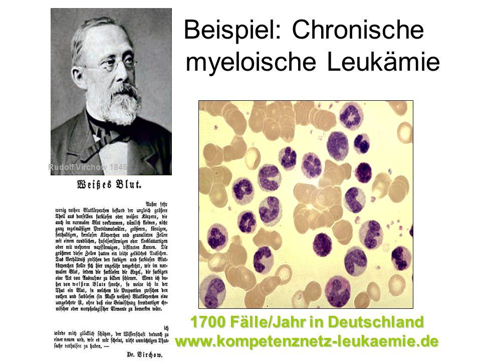 Beispiel: Chronische myeloische Leukämie