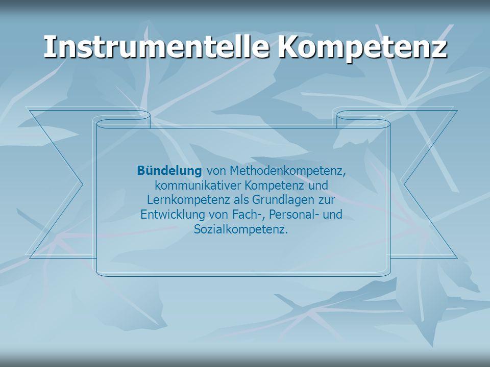 Instrumentelle Kompetenz