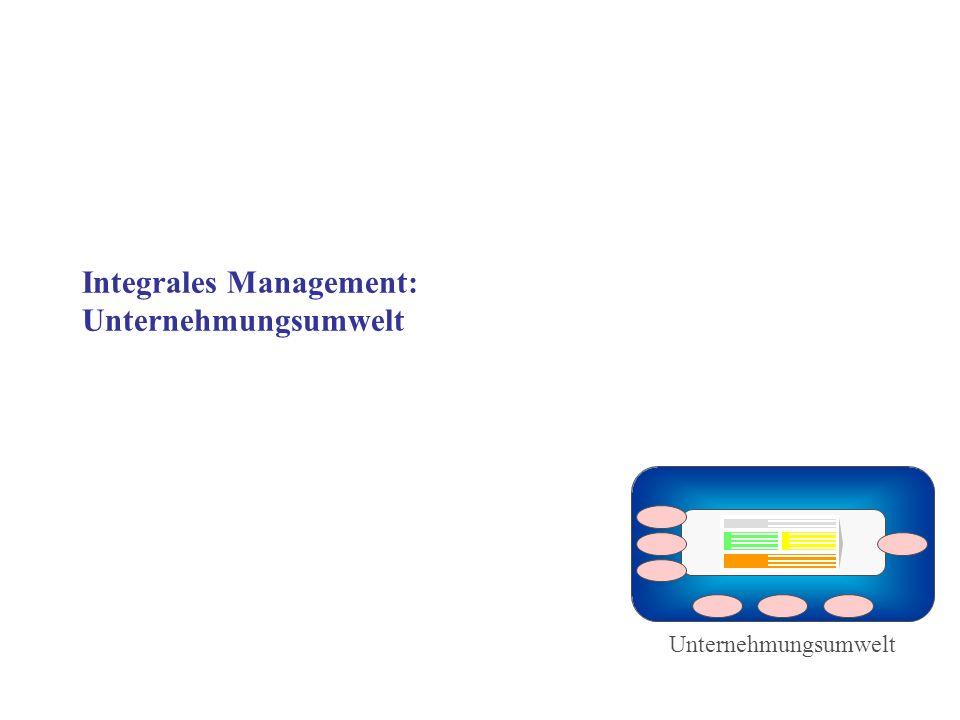 Integrales Management: Unternehmungsumwelt