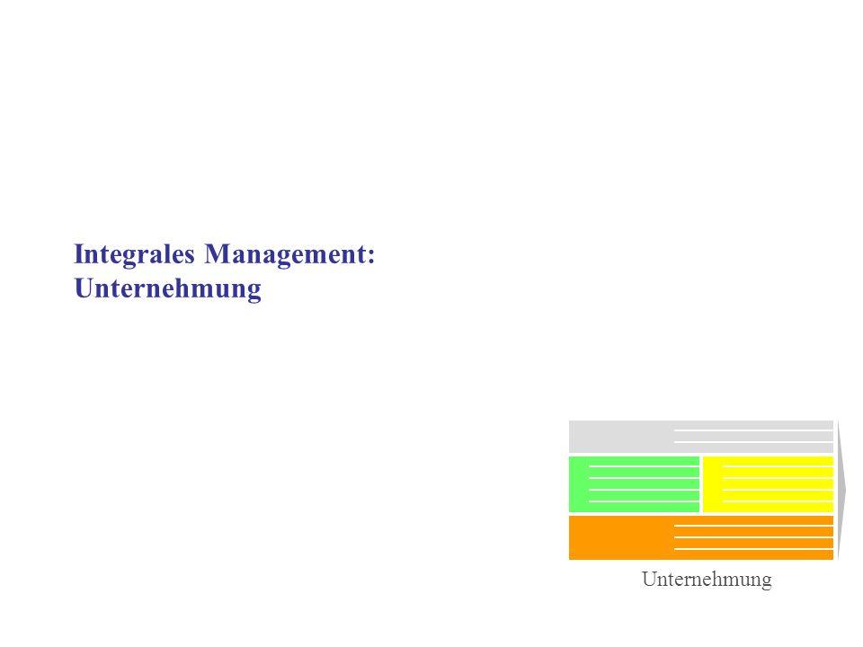 Integrales Management: Unternehmung