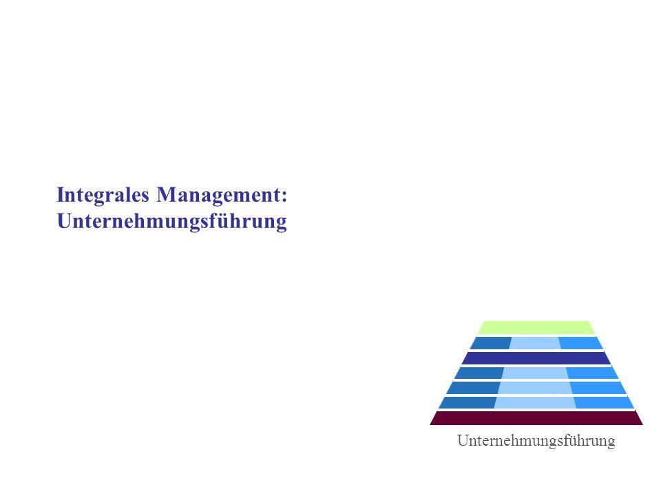 Integrales Management: Unternehmungsführung