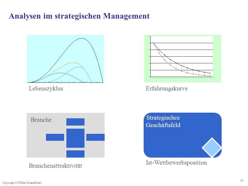 Analysen im strategischen Management