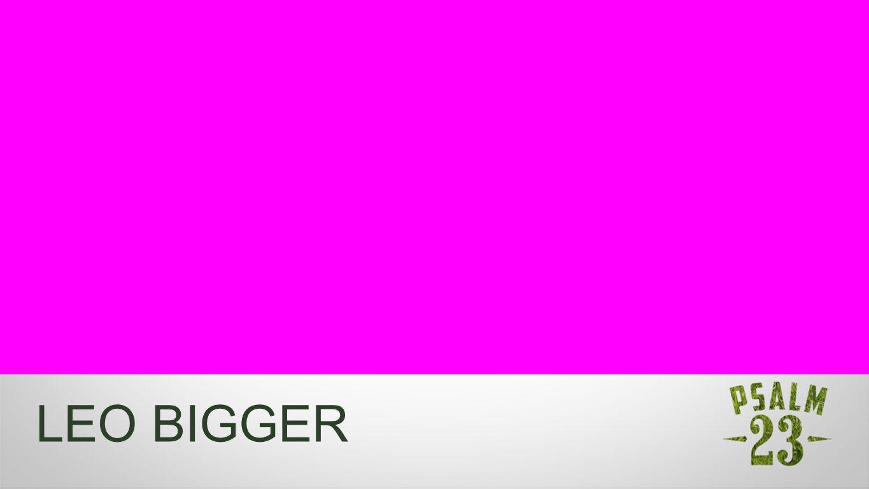 Namenseinblender LEO BIGGER