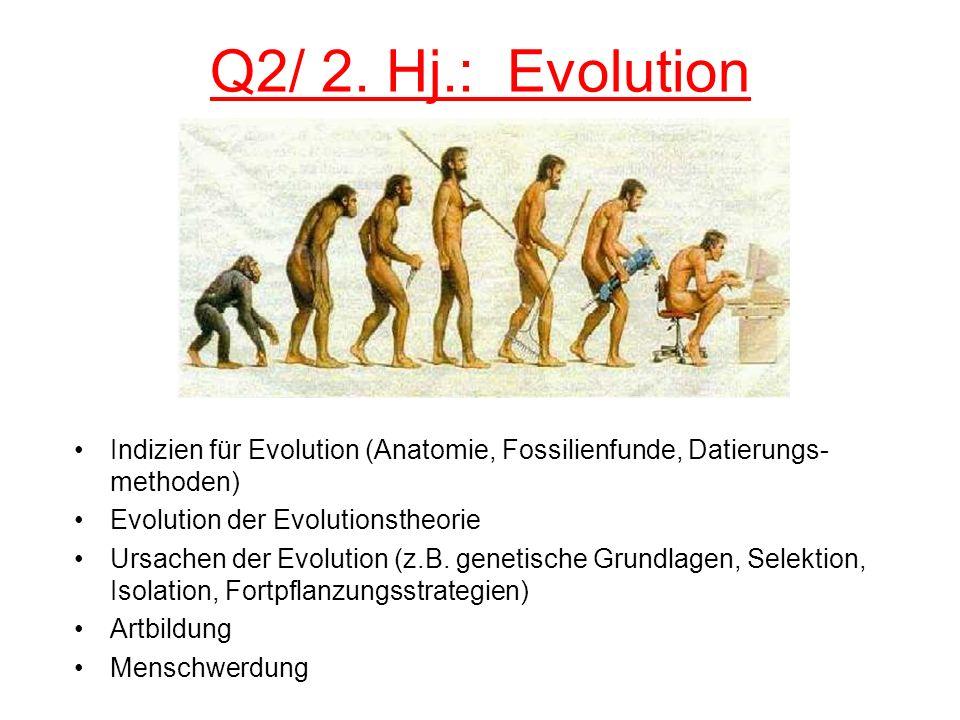 Q2/ 2. Hj.: Evolution Indizien für Evolution (Anatomie, Fossilienfunde, Datierungs-methoden) Evolution der Evolutionstheorie.