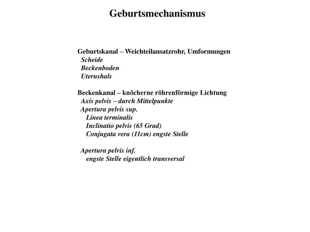 Wunderbar Weibliche Anatomie Damm Galerie - Menschliche Anatomie ...