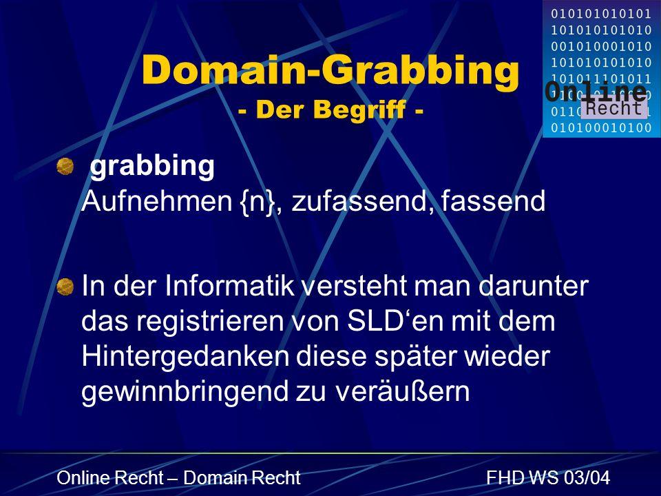 Domain-Grabbing - Der Begriff -