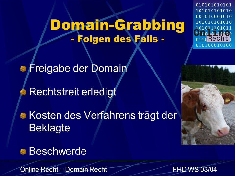 Domain-Grabbing - Folgen des Falls -