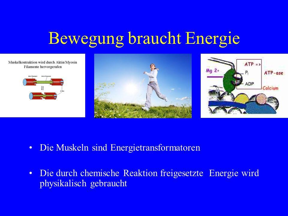 Bewegung braucht Energie