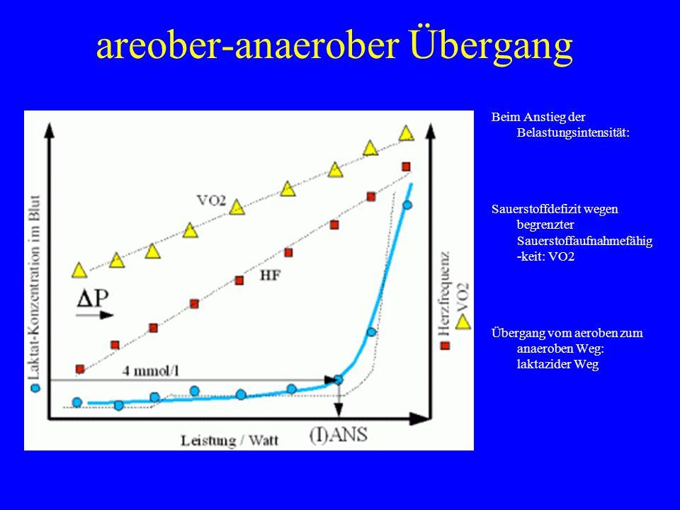 areober-anaerober Übergang