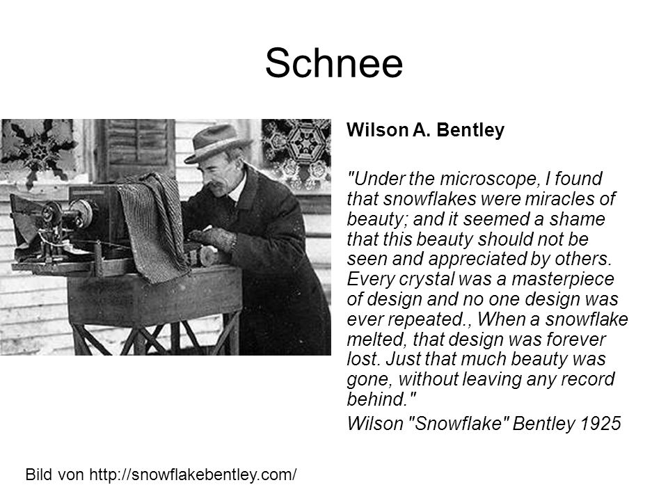 Schnee Wilson A. Bentley