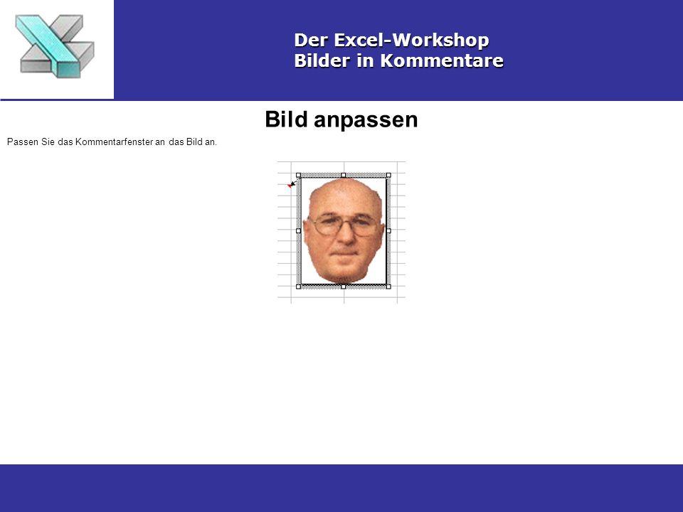 Bild anpassen Der Excel-Workshop Bilder in Kommentare
