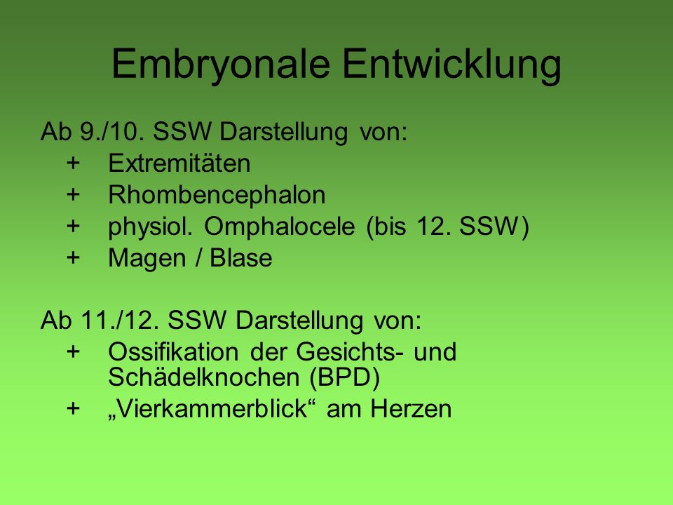Embryonale Entwicklung
