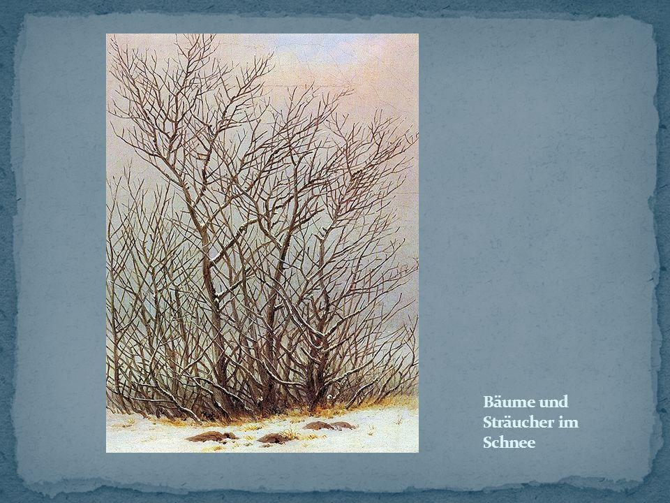 Bäume und Sträucher im Schnee