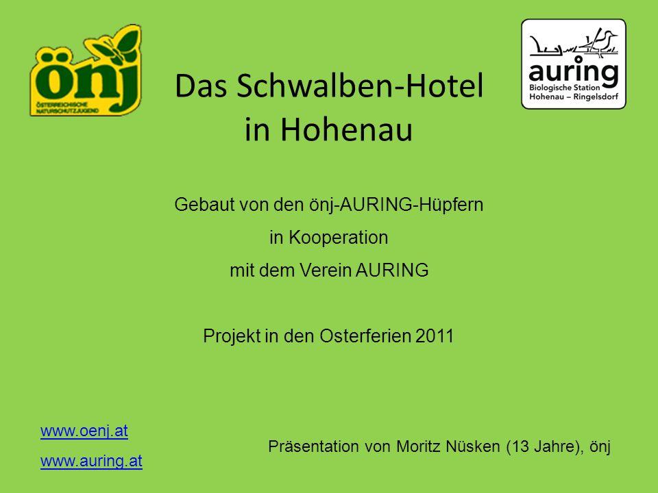 Das Schwalben-Hotel in Hohenau
