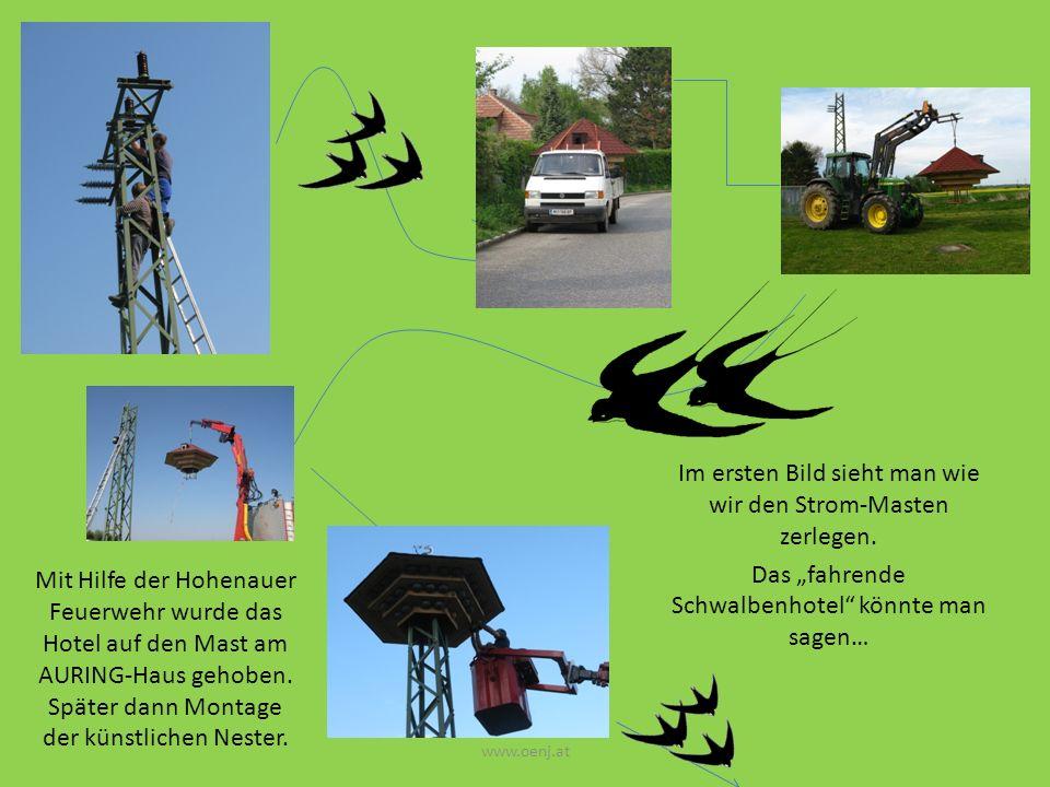 Im ersten Bild sieht man wie wir den Strom-Masten zerlegen.