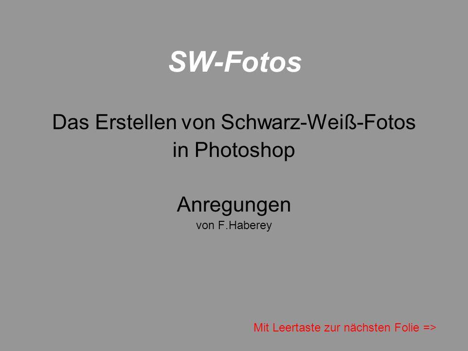 Das Erstellen von Schwarz-Weiß-Fotos