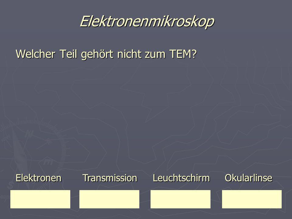Elektronenmikroskop Welcher Teil gehört nicht zum TEM